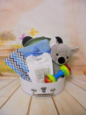 Baby gift box Panda